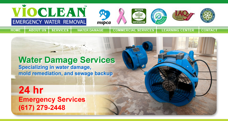 Water Fire Mold Carpet Cleaning VioClean